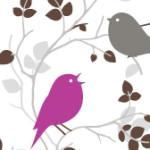 birds-one-purple
