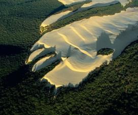 Fraser Island Dune