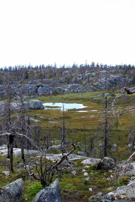 Vottovaara lake Image credit