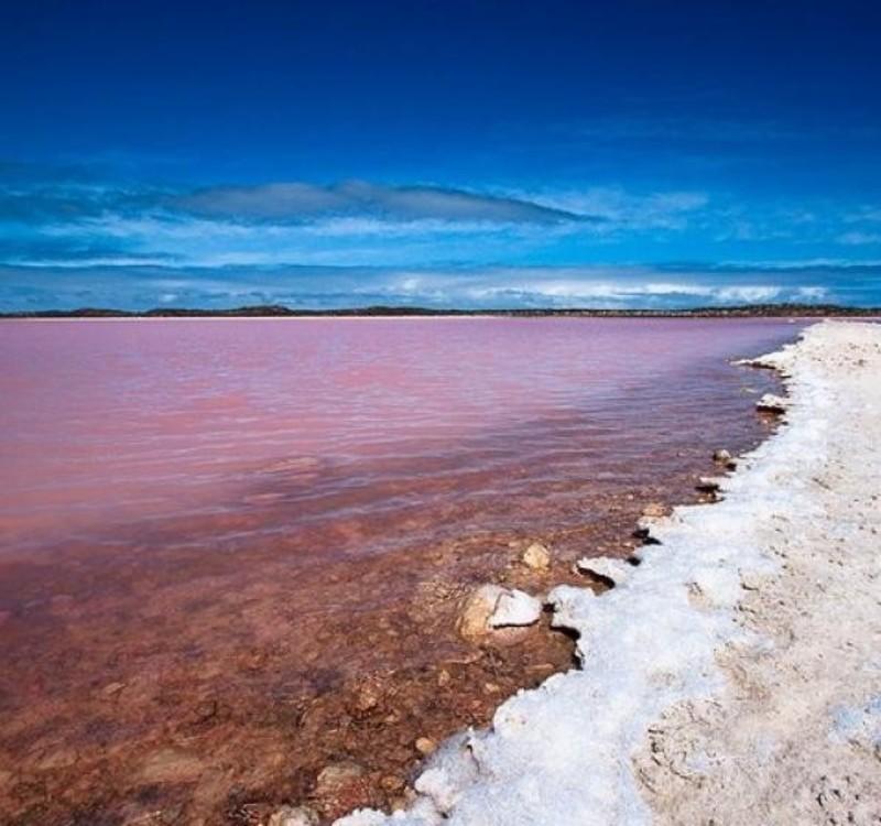 Pink_Lake_Hiller