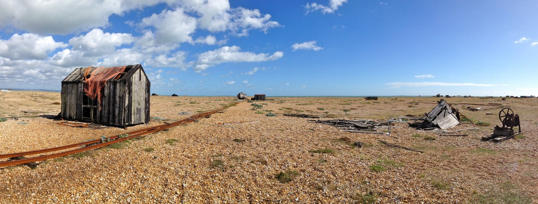 Image result for dungeness