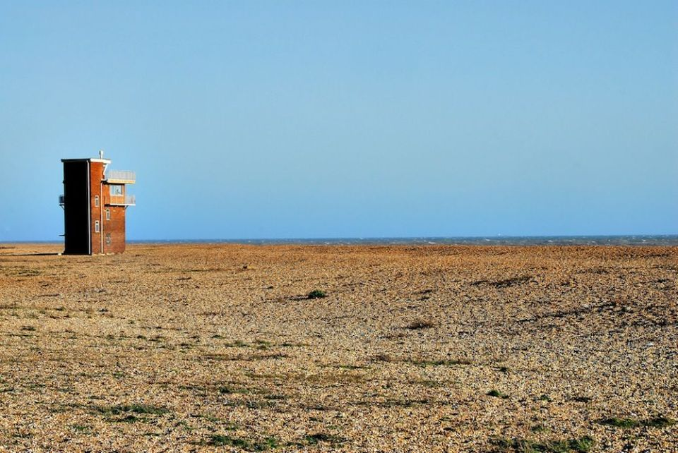 Dungeness8