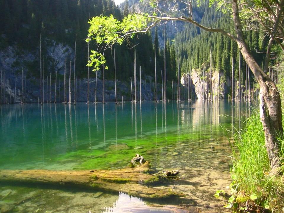 Kaindy_lake_south-east_Kazakhstan