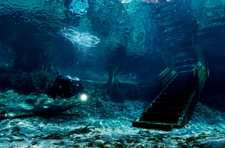 Ginnie Springs underwater