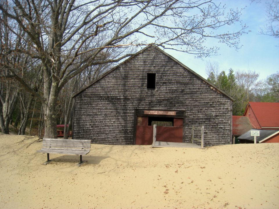 Remnants of the Tuttle farm.