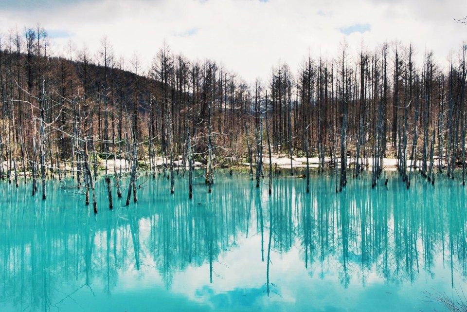 Shirogane Blue Pond, Biei, Hokkaido