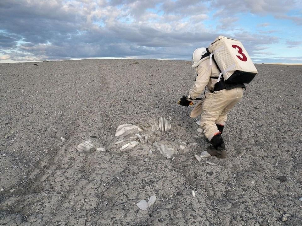 Finding a gypsum deposit at Gemini Hills in the Haughton Impact Crater.