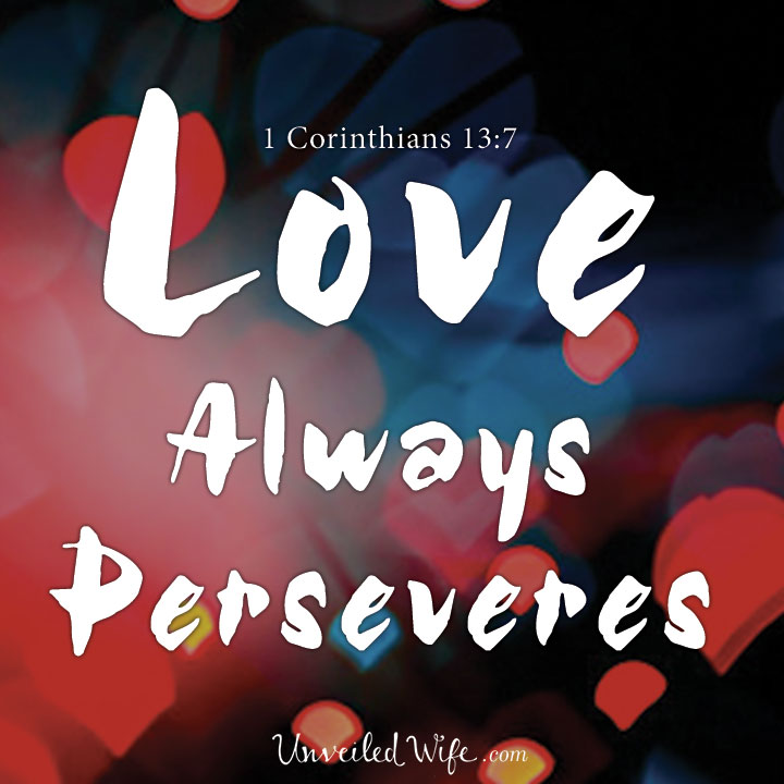 Image result for persevering love