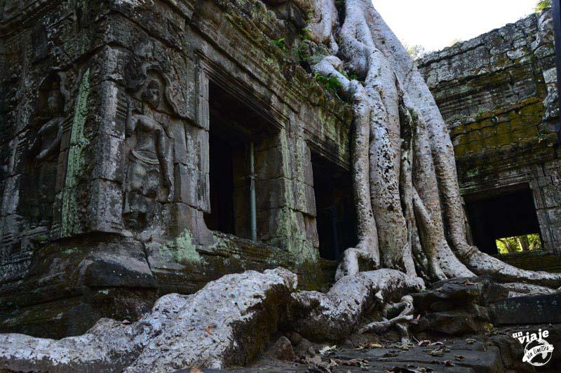 Ta Prohn, templos de angkor, camboya.