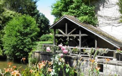 Un restaurant du côté de Nogent : le Moulin de Basse-Roche