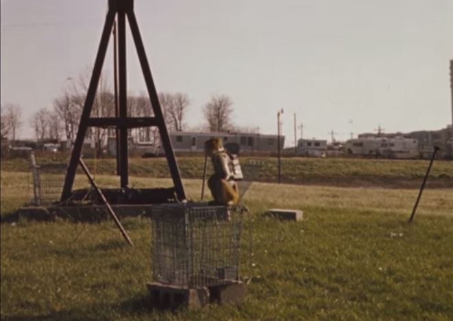A monkey wearing a vest and backpack sits on top of a cage outdoors.