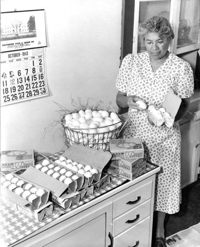 16-G-130-AAA-9070: Prince Georges County, MD., Mrs. Laura V. Hammond, Negro farm woman, fills egg cases for Jerry C. Barnes, Negro poultry farmer of Prince George County, Md. Oct. 1943