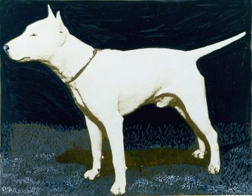 Bull Terrier (17-HD-C001)