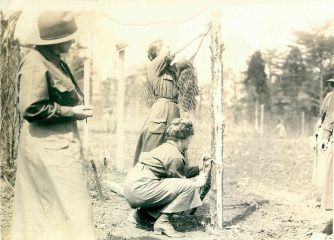 No caption, no date. Photograph from Photographs of Food Conservation Activities, 1917 - 1919. (Local ID: 4-G-6-24)