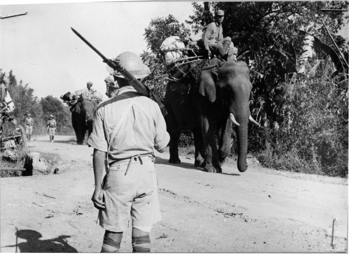 4/3/45. A Chinese infantryman (foreground) watches elephants carrying supplies along the Stilwell road for Chinese troops battling the Japanese in Burma. Following the liberation of Mandalay by British and Indian troops on March 20, 1945, Chinese forces northeast of this principal base in central Burma, completed clearing the Lashio-Hsipaw section of the road between Lashio and Mandalay. The loss of Mandalay by the Japanese was a crushing defeat in their battle to maintain supply centers on the Asiatic continent.