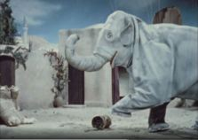 An elephant terrorizes a small village in The Emperor's Elephant.