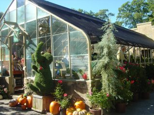 A greenhouse at Winterthur.