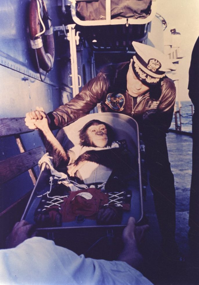 Photograph of the Chimpanzee Ham on the Deck of the USS Donner