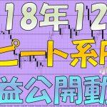 豪ドル円・カナダドル円ロング ループイフダンなど2018年12月のリピート系FXの損益公開動画