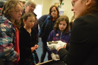 Visitors got up close with our objects at the object handling station