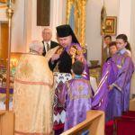 Entrance of our Lord into Jerusalem: Palm Sunday — 2014