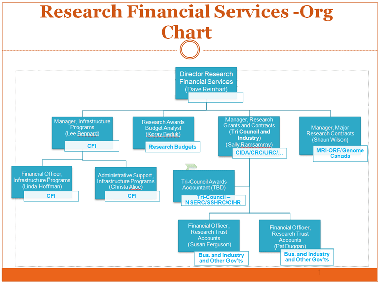 Organization Chart  Financial Services