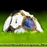 La crisi inarrestabile del calcio italiano
