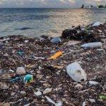 Spiagge italiane ridotte a discariche: Plastica, cotton fioc e mozziconi di sigaretta