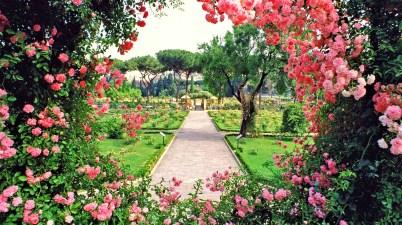 """Tra Circo Massimo e il Parco Savello, più noto con il nome di """"Giardino degli Aranci"""", il roseto comunale di Roma sublima la bellezza dei vicini resti del Palatino."""