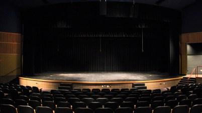 teatro, spettacolo dal vivo, sala,