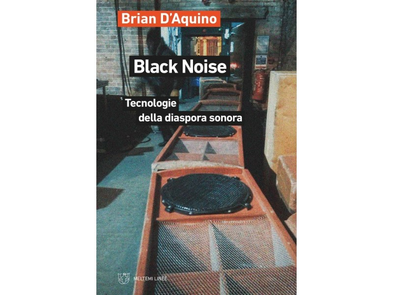 Black Noise di Brian D'Aquino