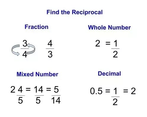 How to Find the Reciprocal