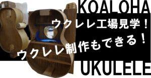 koaloha-eye-catching