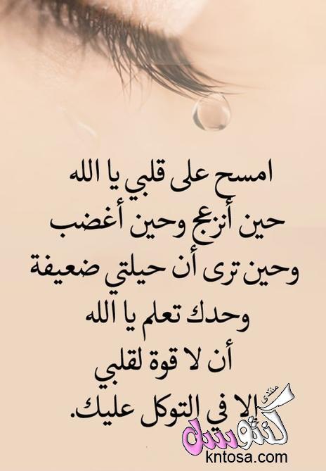 كلام في الحب والعشق والغرام قصيره فيس بوكحالات فيس بوك حب