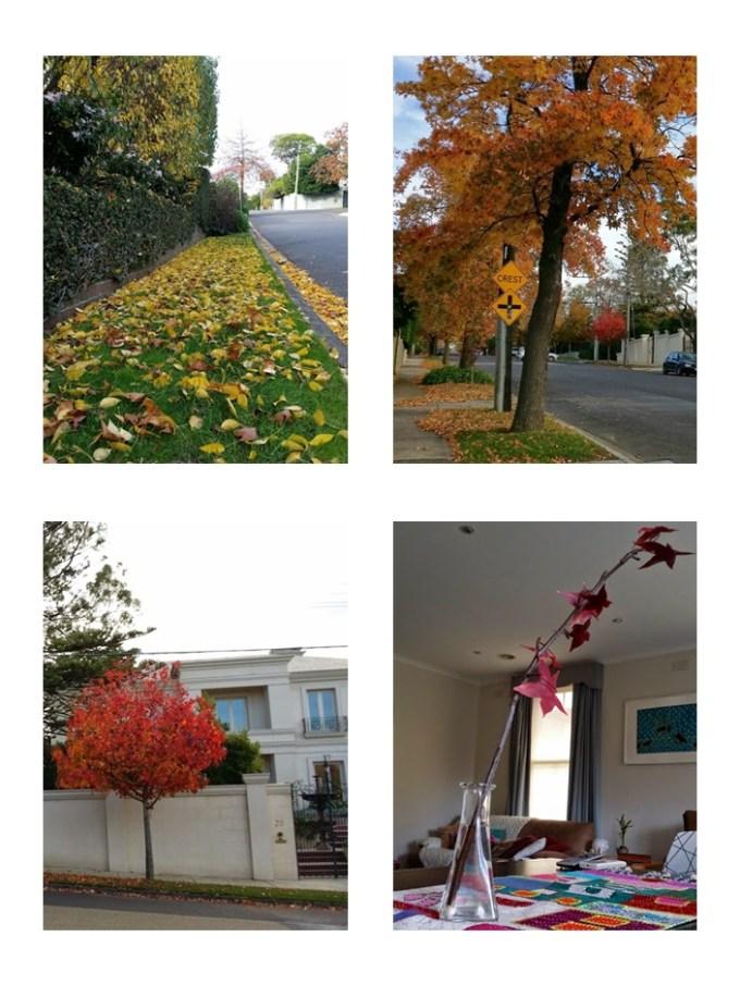 Outono nas ruas e também dentro da nossa casinha :)
