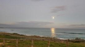 Vou sentir saudades dessa paisagem bem pertinho de mim... Lua nascendo em North Curl Curl.