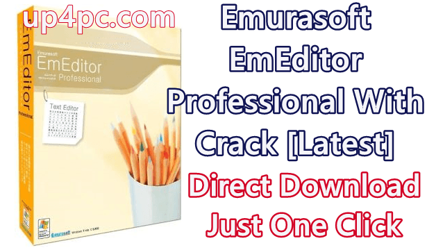 Emurasoft EmEditor Professional 19.4.0 With Crack [Latest]