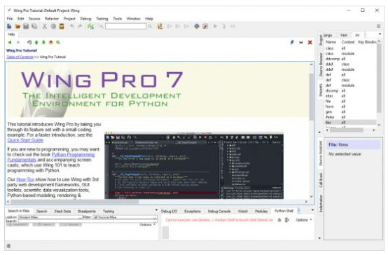 Wing Pro Full Cracked Free Download [Latest]