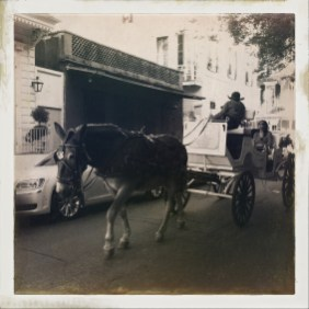Horse and carriage on Dumaine.