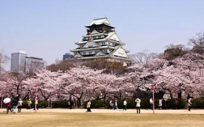 Lễ hội hoa anh đào mùa xuân Nhật Bản 4N3D: Tokyo – Hakone – Fuji – Odaiba
