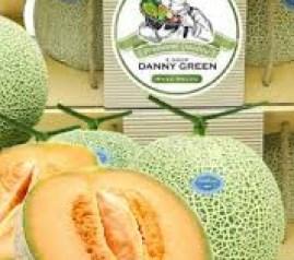 DƯA LƯỚI SẠCH DANNY GREEN – DƯA LƯỚI TAKI NHẬT