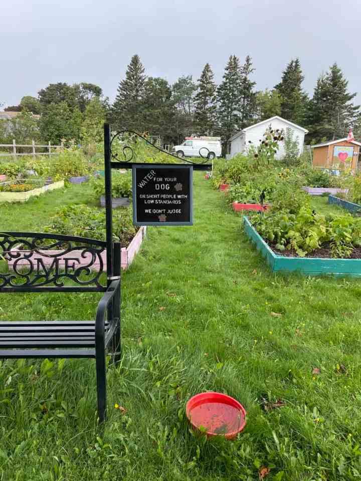the community garden in Kensington, PEI