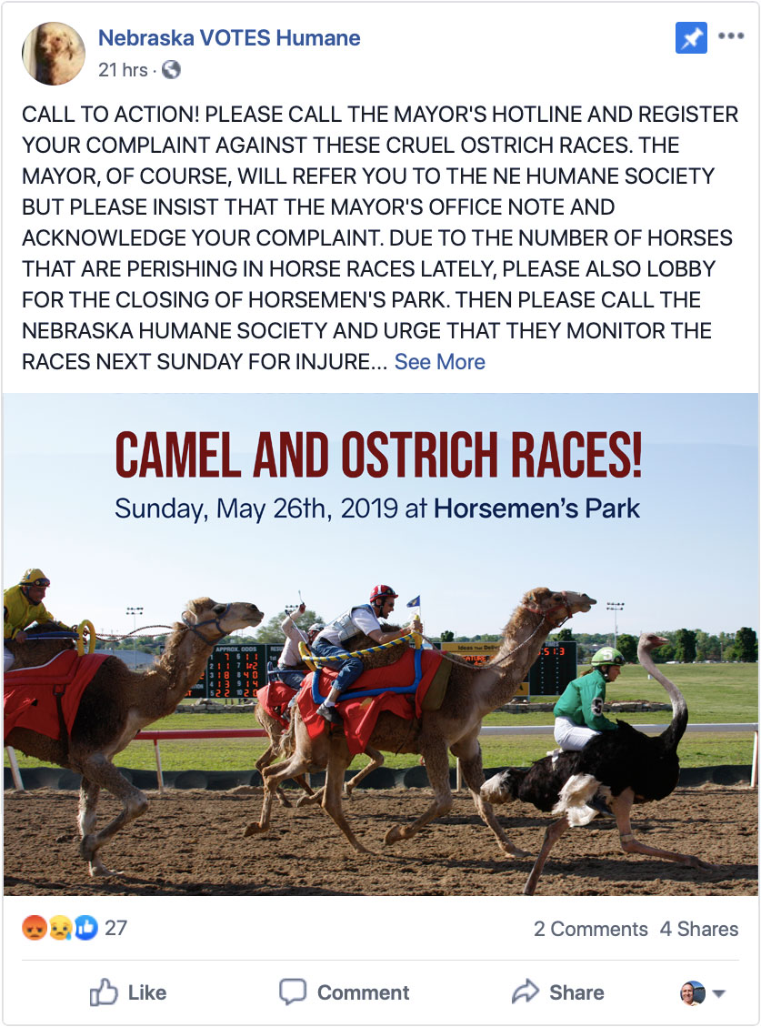 Facebook post protesting camel and ostrich racing