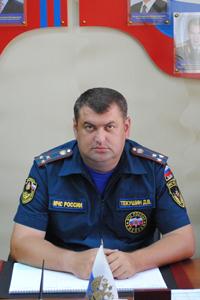 Текушин Дмитрий Вячеславович
