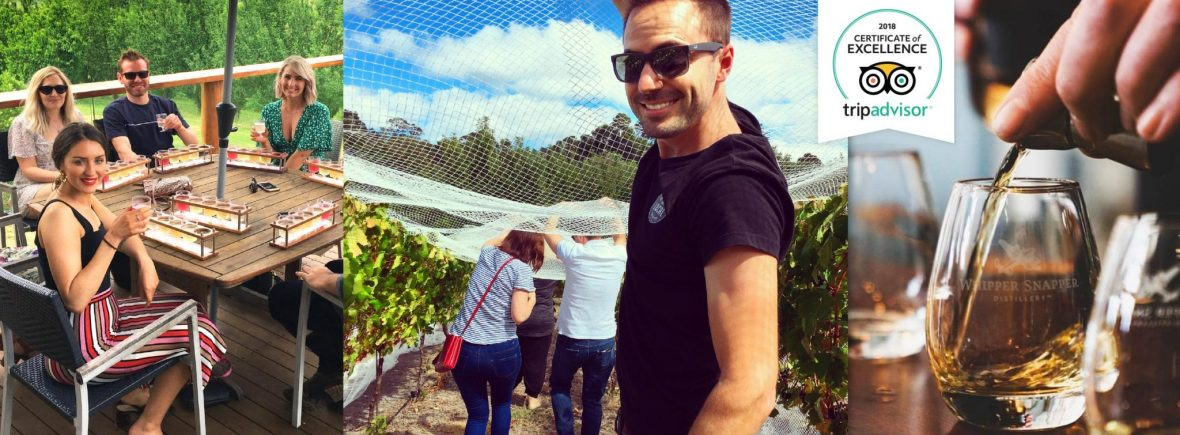 Exploring Bickley Valley vineyards on a cider wine and whiskey distillery tour of Perth