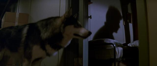 Image result for the thing 2011 dogs