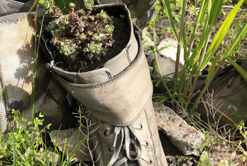 how to use a boot as a planter