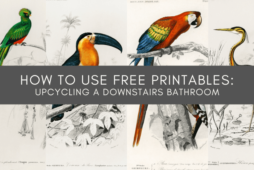 how to use free printables upscaling a downstairs toilet