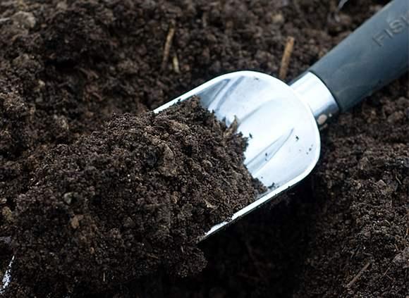 simple ways improve garden