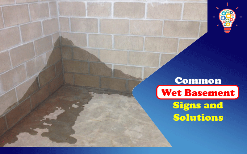 Common Wet Basement Signs and Solutions